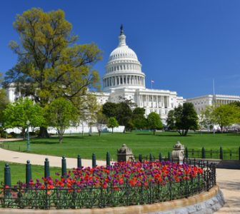 Capitol Hill Guided Walking Tour – Semi-Private
