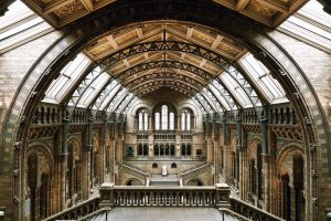 Natural History Museum Tour London