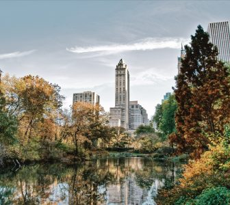 The Essential Central Park Guided Walking Tour – Semi-Private
