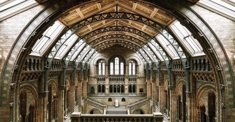 Natural History Museum of London Skip-the-Line Guided Tour – Semi-Private