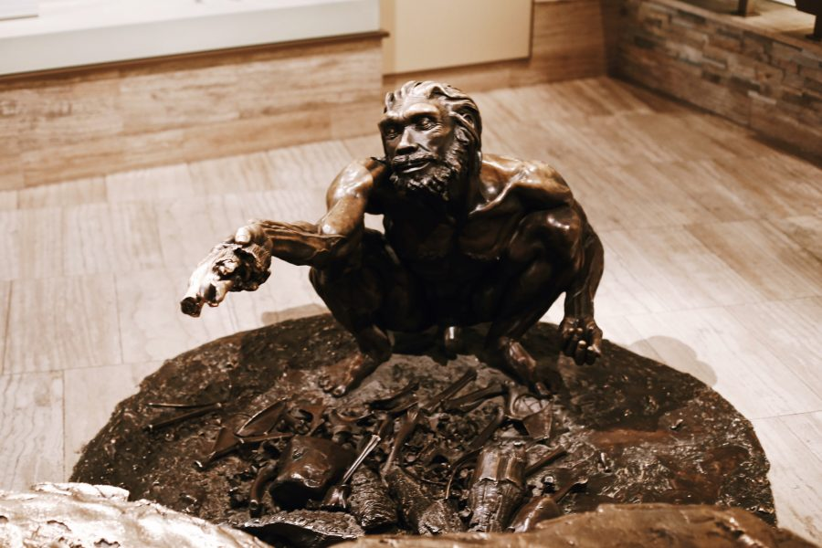 History-Tour-DC-Washington-History-Natural-Museum