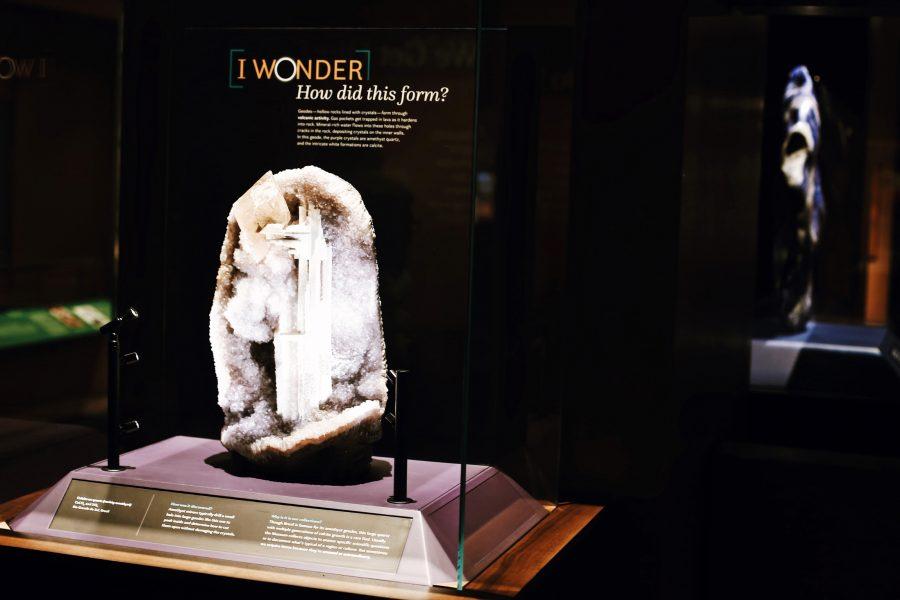 Natural-History-Museum-Washington-DC-Tour-Smithsonian