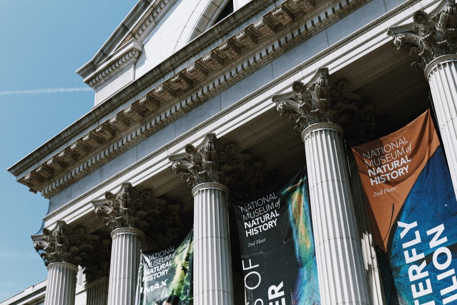 Natural-Museum-History-Washington-Tour-DC-Smithsonian