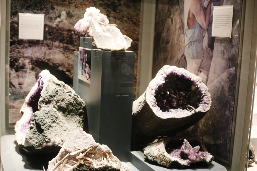 Natural-Smithsonian-Tour-Museum-History