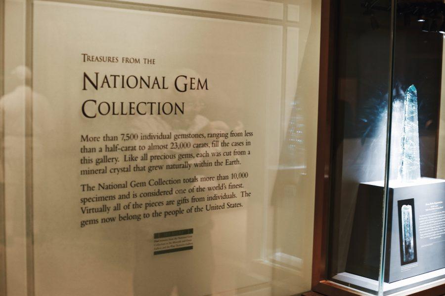 Smithsonian-Natural-History-Museum-Washington-DC-Tour