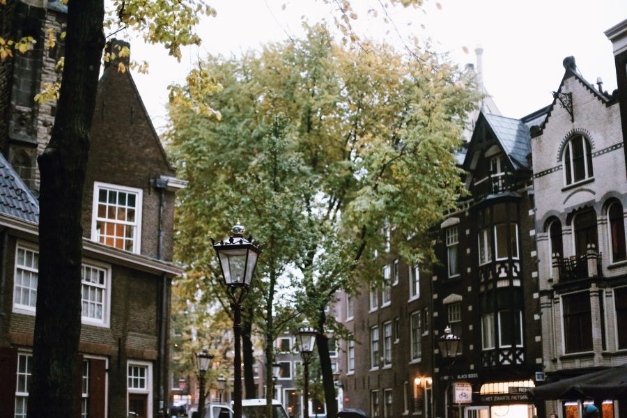Tour-Amsterdam-Tour-Red-Light-District-Guided