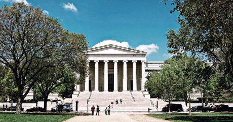 Smithsonian National Museum of Natural History & National Gallery of Art Combo Museum Tour – Semi-Private