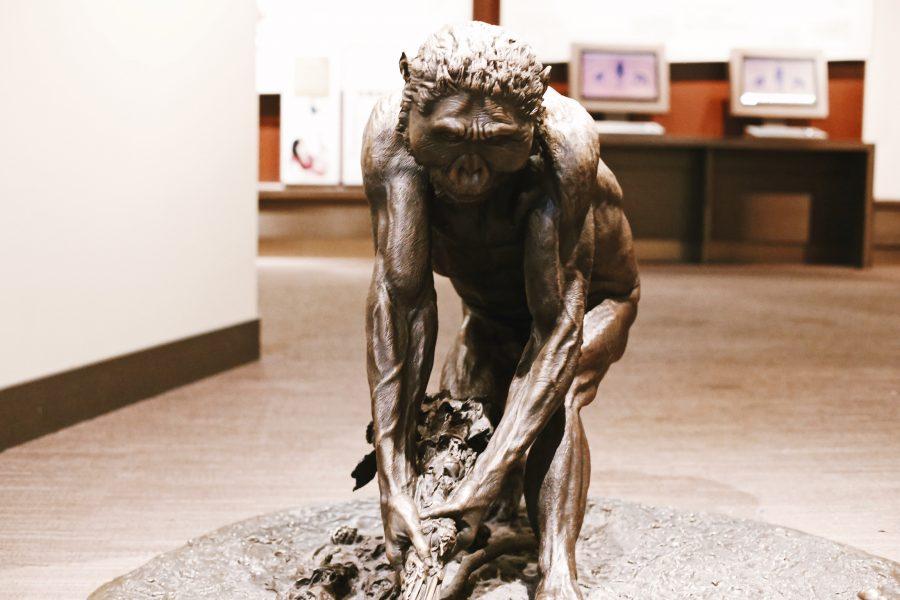 Tour-DC-Natural-History-Smithsonian-Washington-Museum