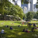 The Best Activities to Do in Central Park