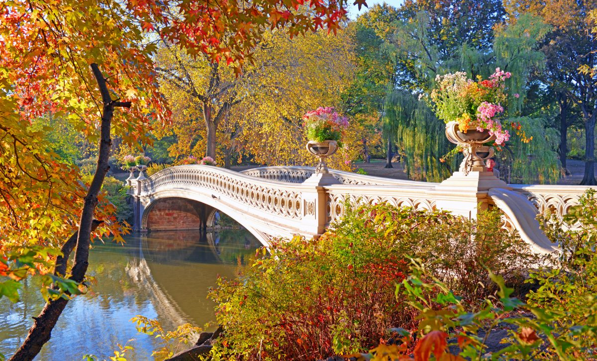 central-park-new-york-best-activity-tour-guide