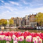 Top 5 Museums to Visit During Your Amsterdam Private Tour